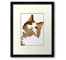 I'm All Ears - Cute Calico Cat Portrait Framed Print