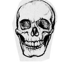 A Simple Skull Smirk by Katelizabethan