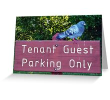 Tenant or Guest ?  Greeting Card