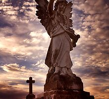 Guardian Angel by Steve Chapple