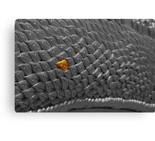 Dragon scale Canvas Print