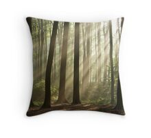 Sun rays in morning forest Throw Pillow