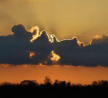 Sunset Burst by Simon Pattinson