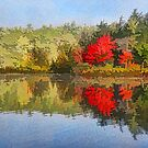 Reflecting on Fall - Autumn Lake Impressions by Georgia Mizuleva