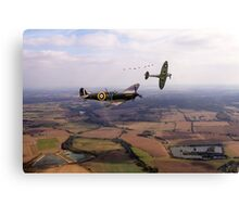 Protecting The Skies  Canvas Print