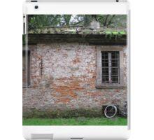 Lucca wall iPad Case/Skin