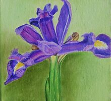 Purple Iris by Geraldine M Leahy