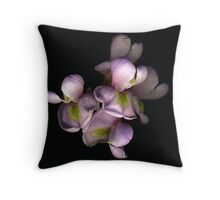 New Mexico Locust 4 Throw Pillow