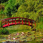 Weymouth - Lillies - Little Red Bridge. by delros