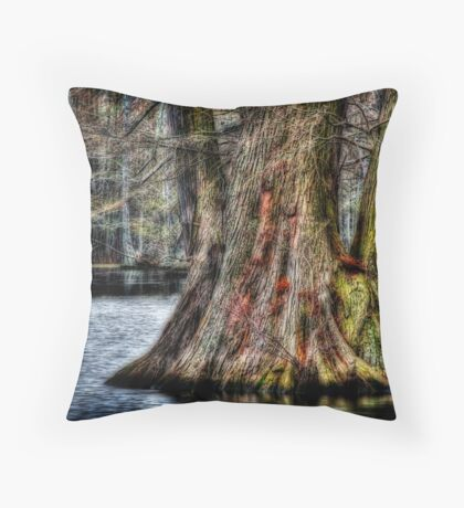 Big Cypress Throw Pillow