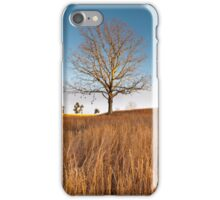 Virginia Native Grassland Landscape Winter iPhone Case/Skin