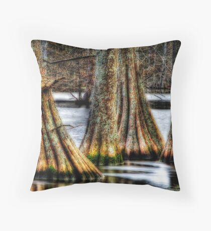 Cypress Quad Throw Pillow