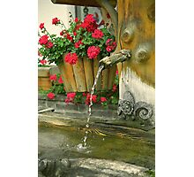 Water and flowers Photographic Print