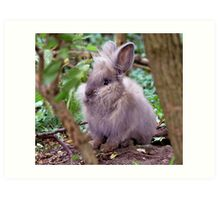 Lion head rabbit Art Print