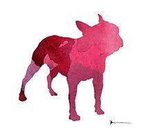 Boston bull silhouette painting watercolor art print by Joanna Szmerdt