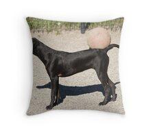 black dog & ball Throw Pillow