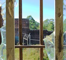 View From My Cell by Bev Woodman