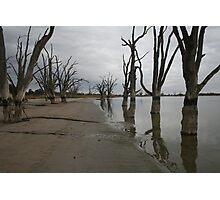 Lake Bonney,Barmera Photographic Print