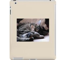 Winter Nap iPad Case/Skin