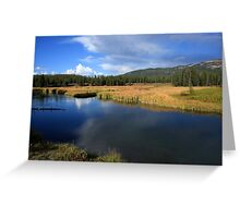 Tranquil Yellowstone Greeting Card