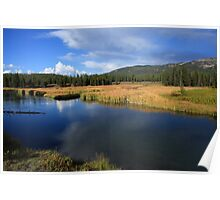 Tranquil Yellowstone Poster