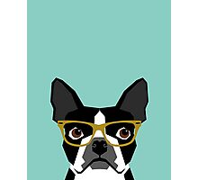 Darby - Boston Terrier pet design with hipster glasses in bold and modern colors for pet lovers Photographic Print