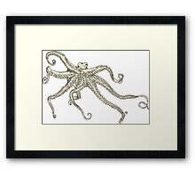 Vector illustration of hand drawn with octopus Framed Print