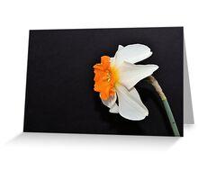 Daffodil Profile Greeting Card