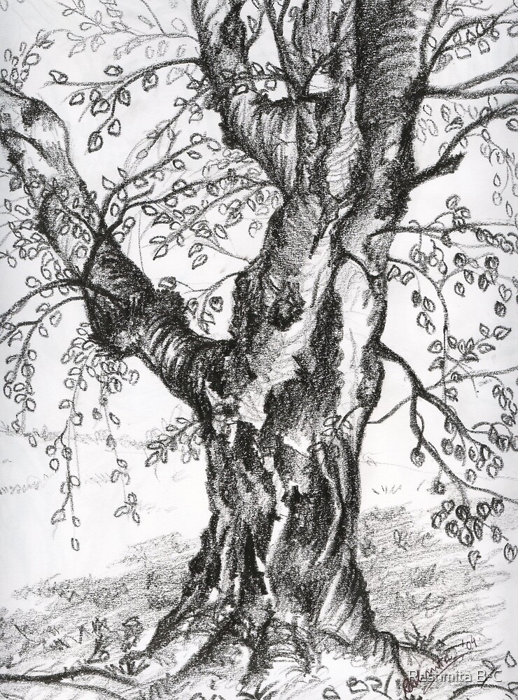 Rooted in Faith by Rashmita B-C