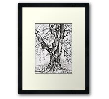 Rooted in Faith Framed Print