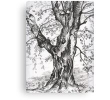 Rooted in Faith Canvas Print