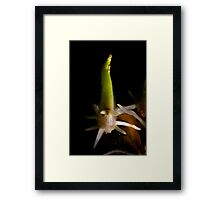 Alien Pod Attack Framed Print