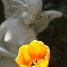 Tulip Faerie by tkrosevear