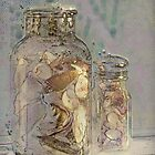 The Shell Jar by Eileen McVey