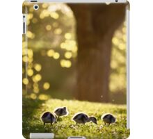 Paradise by the forest light iPad Case/Skin