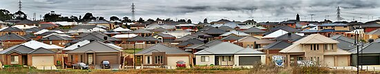 """""""Little boxes on the hillside, little boxes made of ticky tacky"""" by Heather Prince"""