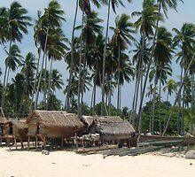 Mabul Island - Fisher Village - Borneo by David Meyer