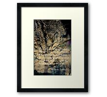 A learned cat Framed Print
