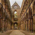 Jedburgh Abbey by Donald  Stewart
