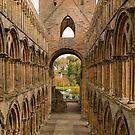 Jedburgh Abbey (2) by Donald  Stewart