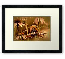*Vintage Floral* Framed Print