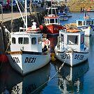 Fishing Boats by Donald  Stewart