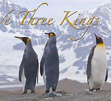 We Three Kings by Simon Coates