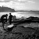 Winter Surfers II by Vee T