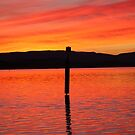 Sunset Pole by Peter Pevy