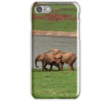 Playful calf - image 2 iPhone Case/Skin