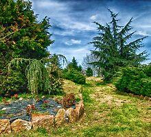 The garden by DariaElena