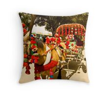 Horse Carriages of Balkh Throw Pillow