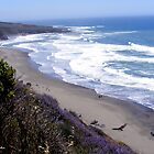 The Pacific Coast by NancyC