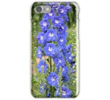 Stalk of Delphiums iPhone Case/Skin